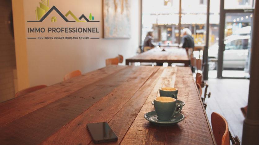 Murs et fonds de commerce restaurant Angers